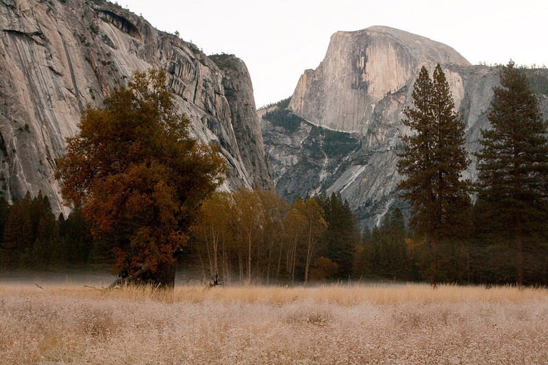 Early one cold morning, frost covers the meadow. Half Dome & Washington Column from the meadow between Yosemite Village & the Ahwahnee Hotel.