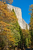 Still a glorious day! El Capitan, a 3,000 foot vertical cliff makes it one of the largest exposed monoliths in the world. The summit is 3,245 feet from its base.