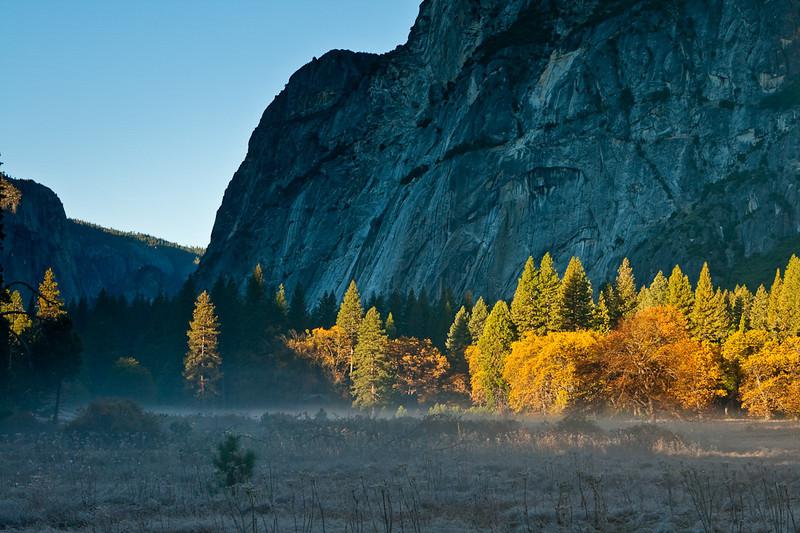 Early morning, Cook's Meadow, between Sentinel Bridge & Yosemite Village.