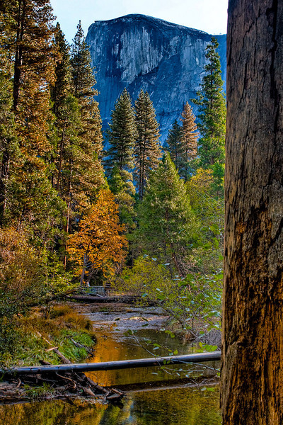Basically the same shot, different processing. <br /> Half Dome from the creek at Backpacker's Camp