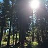 Yosemite 2014