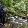 Along Tenaya Creek, Mirror Lake Trail