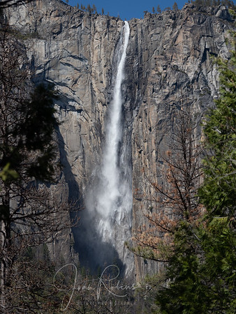 Yosemite Falls as seen from the road