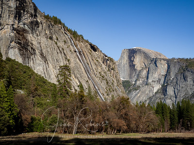 Half Dome from my walk