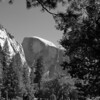 A View of Half Dome in Yosemite