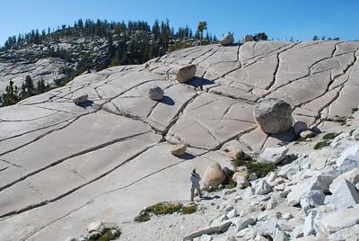 A few glacier remnants.  Yosemite Nat'l Park