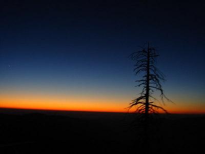 Yosemite0106 051