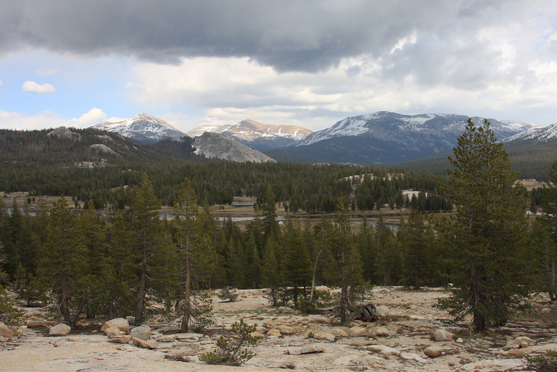 Lembert Dome and Tuolumne Meadows from Pothole Dome