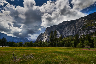 Yosemite  May 25, 2016 - Wednesday - Yosemite - Valley driving stops  Credit- Robert Altman