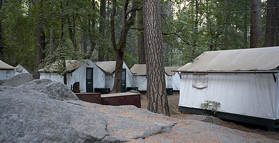Some of the tent cabins at Curry Villa.