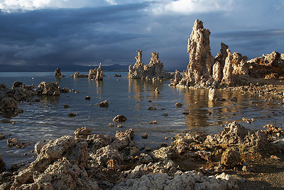Tufa from the southern shore of Mono Lake.