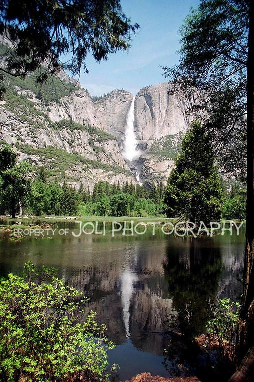 """""""Yosemite Falls Reflective"""""""