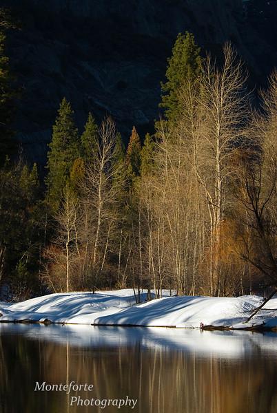 Reflection in Merced River, Yosemite NP California.