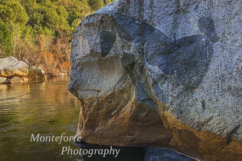 Horse in a rock Merced River Yosemite NP Ca