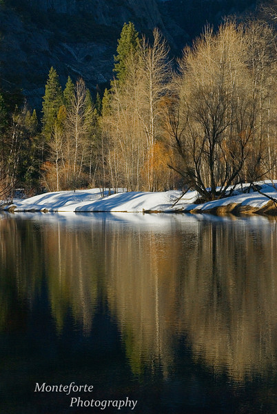 Reflection in Merced River, Yosemite NP Ca.