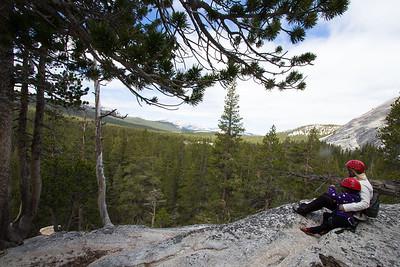 Yosemite National Park - June 15-18, 2014