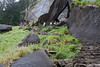 Stairs on the hike to Vernal Falls.. <br /> <br /> Photo by Deb