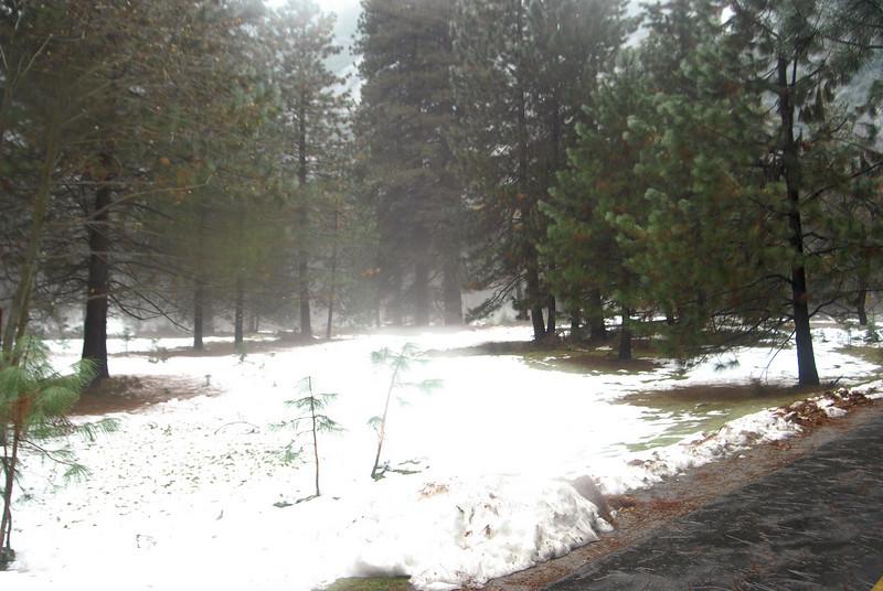 Yosemite_41