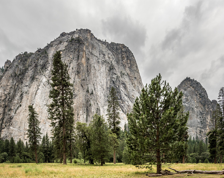 View of Cathedral Spires from El Capitan Meadow