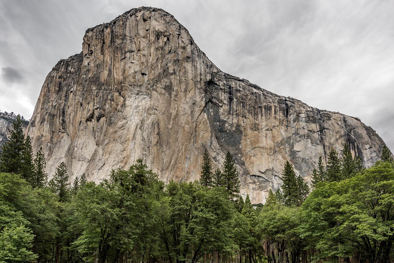 View of El Capitan from El Capitan Meadow