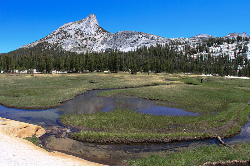 Meadow near Cathedral Lakes