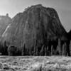 Yosemite National Park Morning