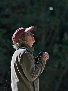 Jenny Birdwatching, Sequoia National Park, California