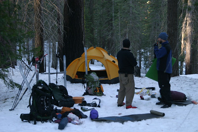 A cold morning begins in the Mariposa Grove of the Giant Sequoias. A valuable lesson was learned the night before: when using a rental tent, check to make sure that it includes a ground tarp BEFORE you set it up the first night.