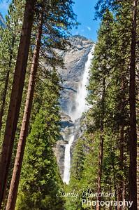 Yosemite 2010 - Yosemite Falls