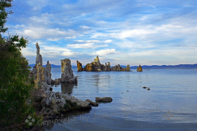 Mono Lake Tufa Towers ~ Although it was getting late in the day, the sun was still up, and the sunset colors were still to come.