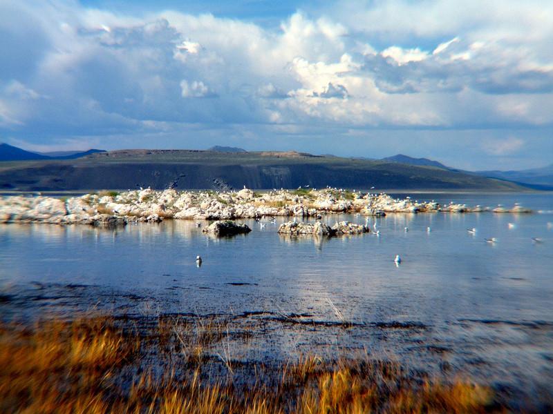 Mono Lake.