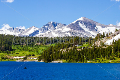 Ellery Lake in the Sierra Nevadas