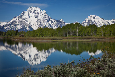 Design: horizontal horizon centered. Mt. Moran from Oxbow Bend turnout
