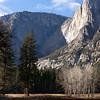 Yosemite Falls and Aspen in Winter