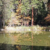 Pond in front of Ahwahnee