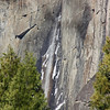 Frozen spray on Yosemite Falls