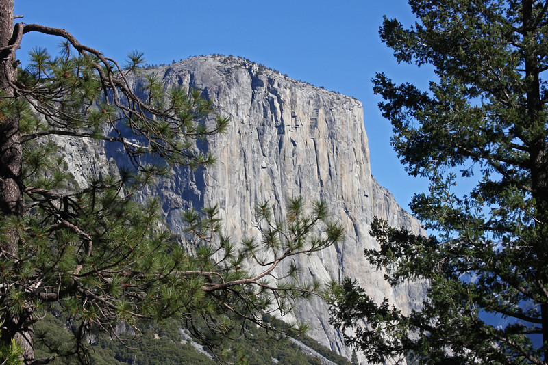 El Capitan - everybody takes this shot, too