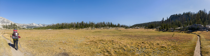 Apline Meadow