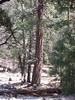 Yosemite - 2016-03-16 at 14-08-03