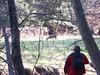A deer<br /> Yosemite - 2016-03-16 at 14-34-56