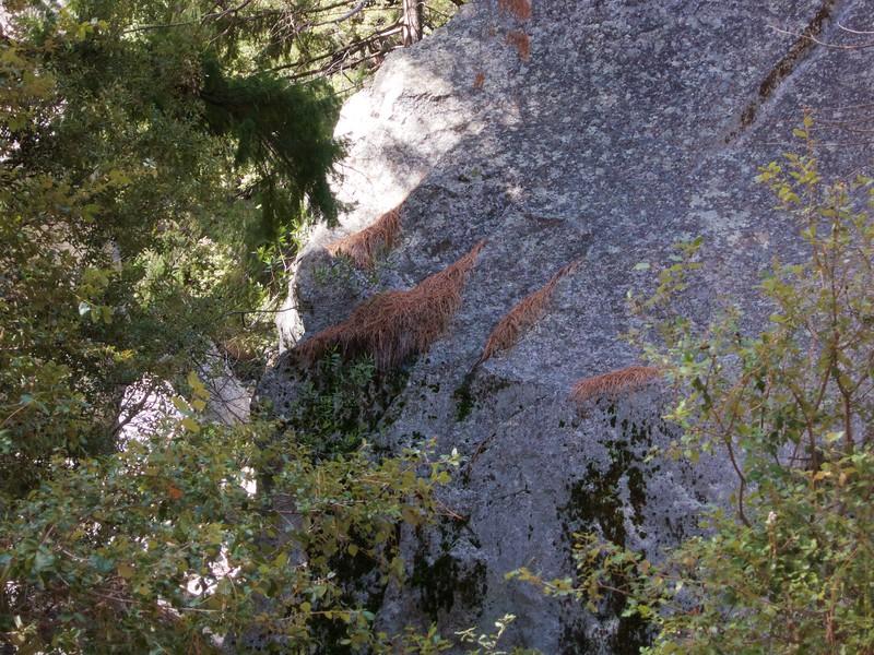 Yosemite - 2016-03-16 at 13-35-13