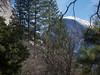 Half Dome<br /> Yosemite - 2016-03-16 at 14-21-57