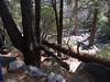 Yosemite - 2016-03-16 at 14-05-27
