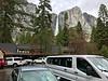 Yosemite Falls above Cedar