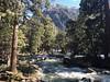 Yosemite Creek downstream