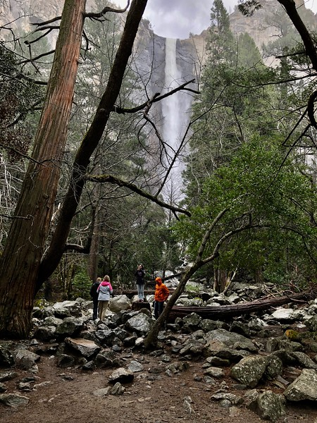 Bridalveil Falls from the path