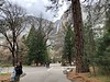 Yosemite Falls and Village