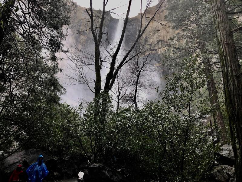 Bridalveil Falls and mist