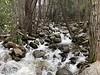 Bridalveil Creek