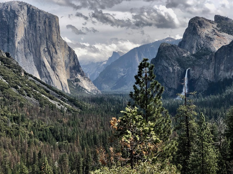 The classic Tunnel View